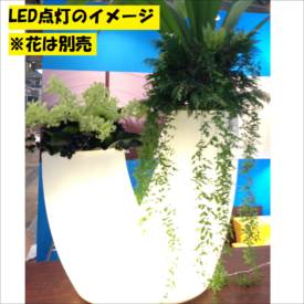 [個人宅配送不可] スイコー 回転成形プランター アリエッタ Fiorente(フィオレンテ)+LED 6号鉢×2タイプ ナチュラル+LED