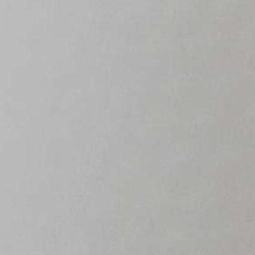 タカショー エバーアートボード メタルカラー W910×H1820×t3(mm) 『外構DIY部品』 グリッターシルバー