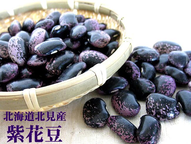 紫色花豆500g≪北海道北见产≫※新豆