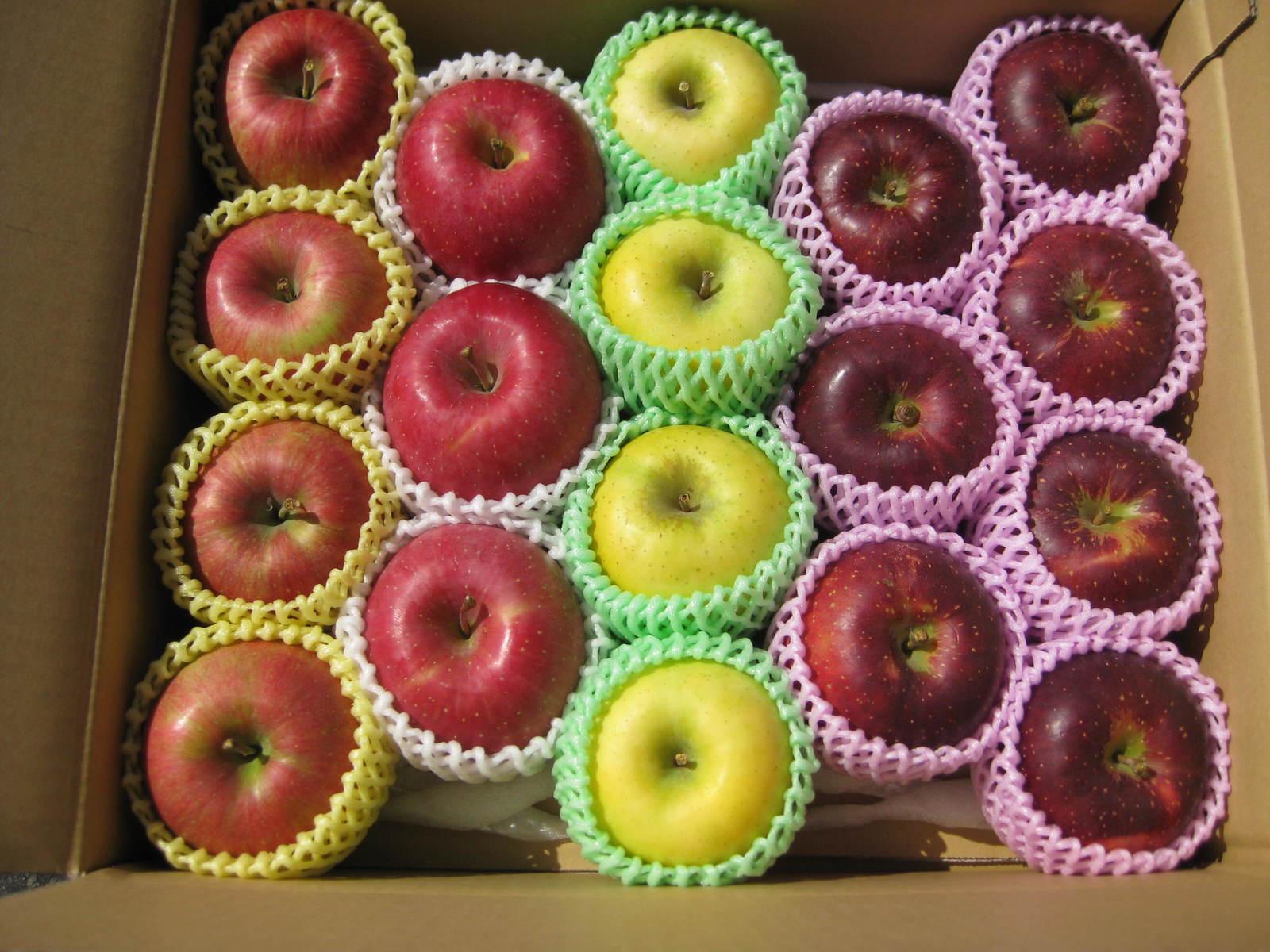 色彩豊かなりんご達の詰め合わせ 園主お勧め旬のりんごの中級ランク お試しパッケージで ギフトにも 少し贅沢な自家用にも最適 敬老の日 母の日 フルーツ 2021年産 園主お勧め2~3品種詰め合わせ 信州産 旬のりんご 品種などは園主お勧めのパッケージ品となります 高品質 掲載画像は一例 ギフト 個数 一部地域は有料 中級ランク約4.5~5kg プレゼント お気にいる 送料無料 イメージ 大きさ です 10~20玉