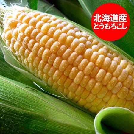 北海道産 とうもろこし 冷凍品 トウモロコシ 北海道の黄色いとうもろこし(冷凍) L~2Lサイズを10本 価格 2280円