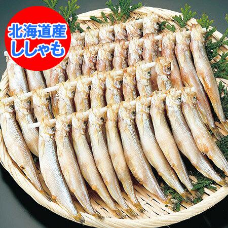 ししゃも 北海道 ししゃも 子持ち 北海道産 シシャモ メス 30尾・化粧箱入り 価格 4320円