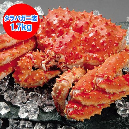 北海道 ポイント・きた蔵の畑 【タラバガニ】 【たらば蟹】の姿 【たらばがに】を存分に堪能できるボリュームの、浜ゆで本たらば蟹 姿 1尾/約1.7kg 価格 17900円