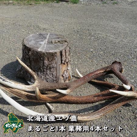 【北海道産】エゾシカ/鹿 角 まるごと1本 業務用 用途自由 4本セット【無添加】