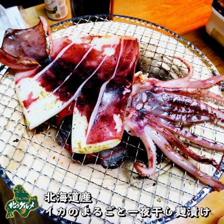 北海道産のイカを贅沢に一夜干しにいたしました 全品送料無料 七輪で焼いてもグリルでも美味しく召し上がれます ^^ 北海道産 配送員設置送料無料 麹漬け 食べ応え抜群 イカのまるごと一夜干し
