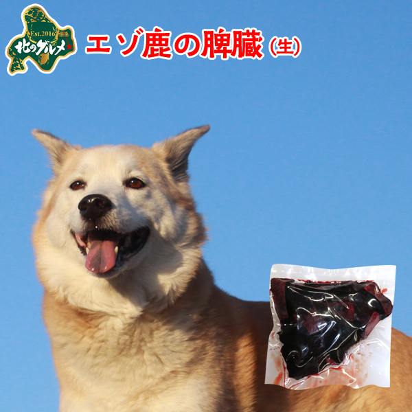 北海道産の天然食材 エゾシカのグリーントライプです 新商品:冷凍 北海道産エゾ鹿の脾臓 100g 高たんぱく質 低脂肪 低カロリー えぞ鹿肉 エゾシカ肉 いぬのおやつ 犬用おやつ シカ肉 当店は最高な サービスを提供します 犬のおやつ ドックフード 高齢犬 ペット用品 高品質 国産 ジビエ 犬のオヤツ