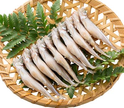 北海道の味覚 北海道産のししゃも ししゃも オス 鵡川 むかわ 送料無料でお届けします 注文後の変更キャンセル返品 干し 10尾 ジャンボサイズ