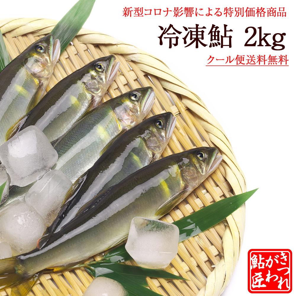 通常5906円(送料込)を4200円(送料込)にて緊急販売 冷凍鮎 2kg 新型コロナ影響による特別価格商品 [冷凍]