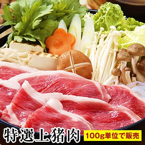 天然 いのしし肉 猪肉 【特選上100g】