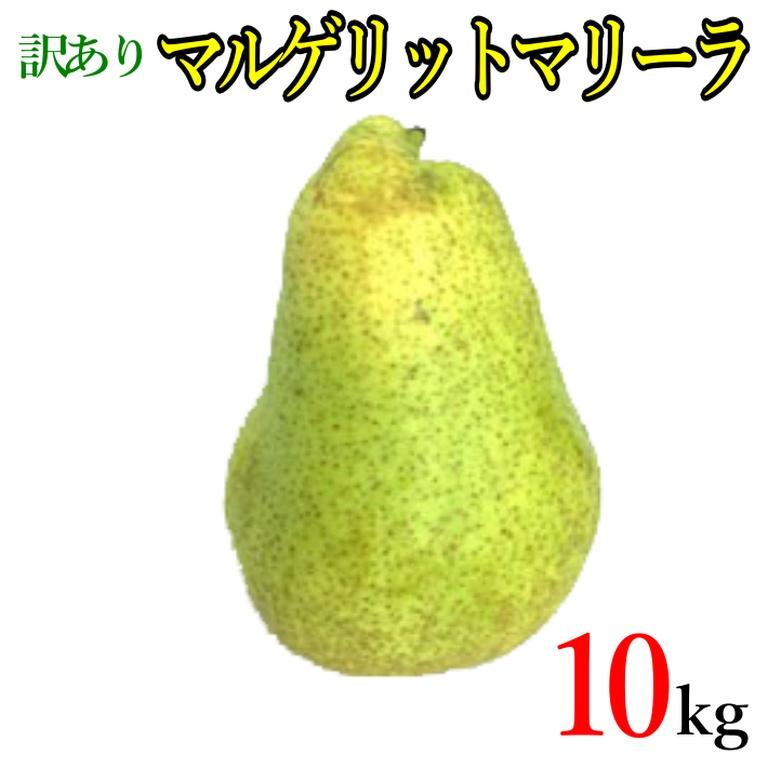 訳あり 美味しい洋梨をぜひこの機会に 10月上旬~中旬発送 マルゲリットマリーラ 10キロ 洋梨 正規品 レビューを書いたら200円クーポン