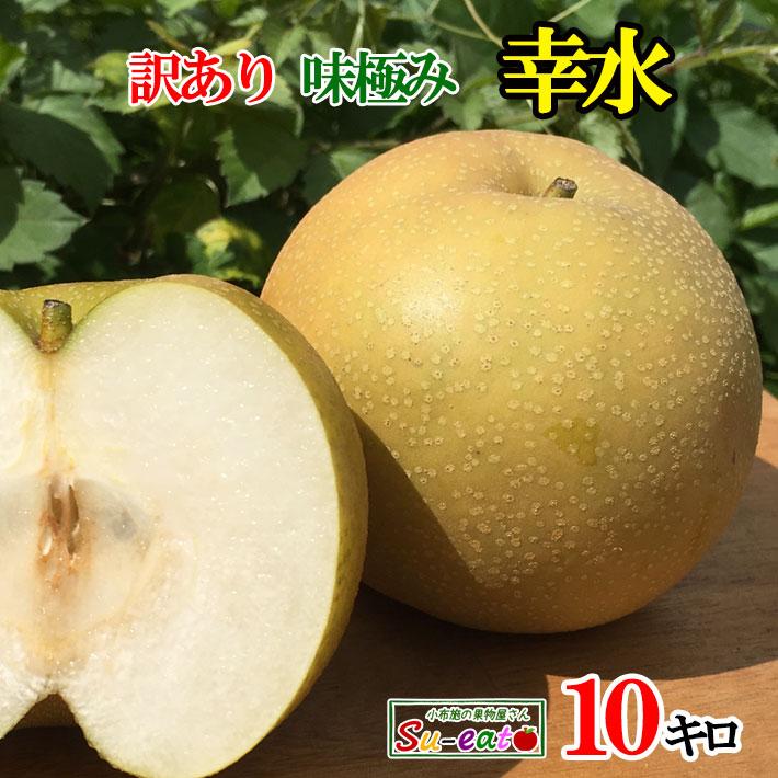 9月上旬発送 特選 梨 幸水 減農薬 長野県産 10キロ
