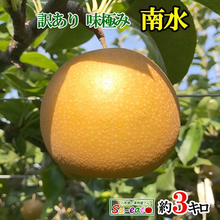 9月下旬発送 南水 訳あり  梨  減農薬 長野県産 3キロ レビューを書いたら200円クーポン