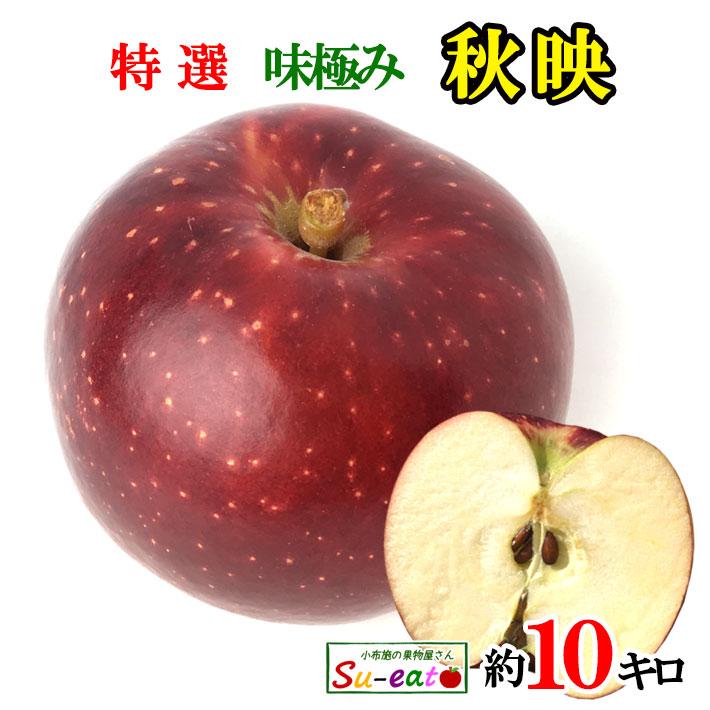 果汁たっぷり濃厚な味わい インパクトありなりんごです 卓越 10月上旬~中旬発送 特選 秋映 レビューを書いたら200円クーポン 長野県産 減農薬 毎日激安特売で 営業中です 10キロ りんご