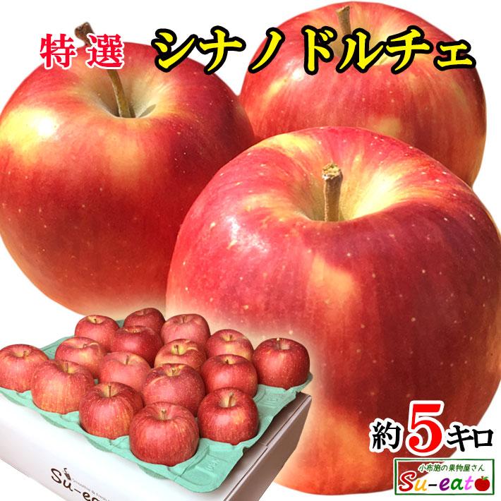 香り良く 甘酸っぱいりんごです 9月上旬~中旬発送 特選 シナノドルチェ 5キロ 長野県産 レビューを書いたら200円クーポン 減農薬 本店 授与