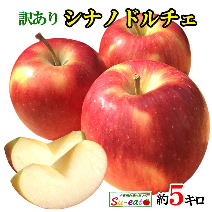 香り良く 甘酸っぱいりんごです あす楽 新着 シナノドルチェ 訳あり レビューを書いたら200円クーポン りんご 5キロ 長野県産 減農薬 プレゼント