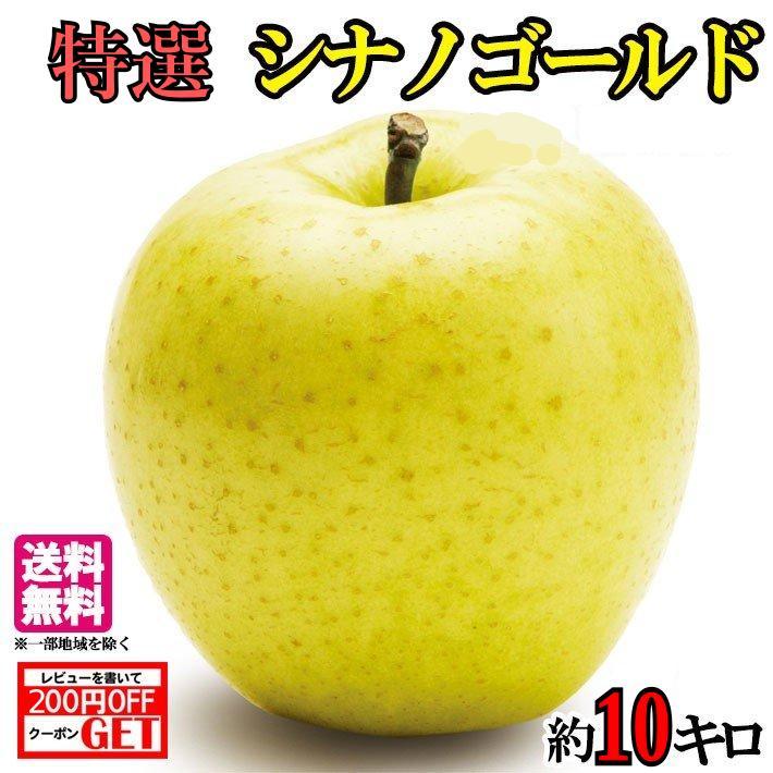 爽やかな味わい 黄金色の大人気リンゴです 11月上旬発送 メーカー直送 特選 シナノゴールド 10キロ りんご 長野 新色 レビューを書いたら200円クーポン 減農薬