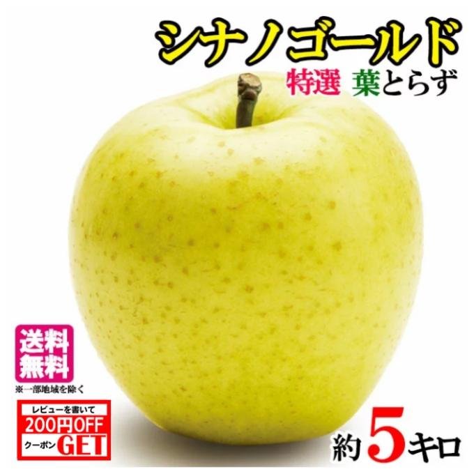 黄金色の大人気リンゴです 11月上旬発送 特選 シナノゴールド りんご 減農薬 入荷予定 長野県産 レビューを書いたら200円クーポン 正規認証品 新規格 5キロ