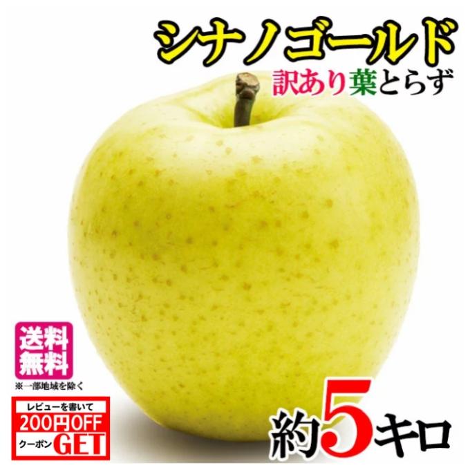 2020 美味しいりんご 10月下旬発送 シナノゴールド りんご 訳あり 減農薬 5キロ 長野県産 在庫一掃 レビューを書いたら200円クーポン