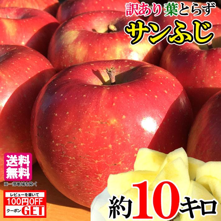 かなり訳あり 激安りんご 値下げ 11月下旬発送 サンふじ 10キロ 減農薬 りんご 永遠の定番