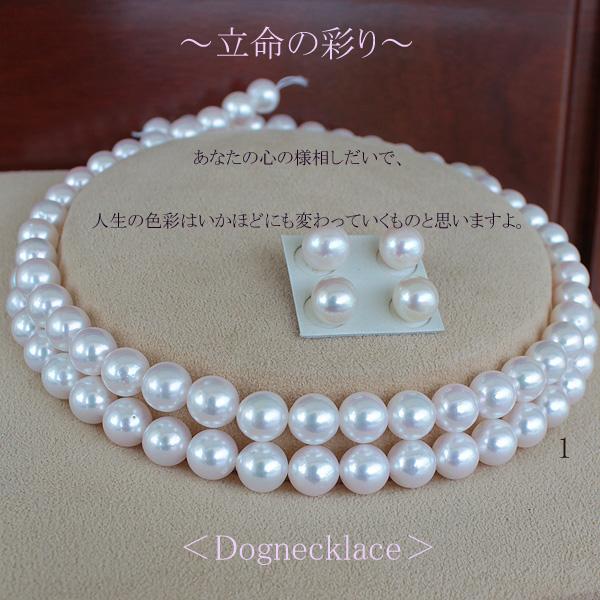 ●K18WG/K14WG<Dognecklace>2連アコヤ真珠越し物 8.5-9mm×2R<Round Shape><ホワイトピンク>の彩り35cm~39cm+7cmアジャスターあなたのお首に合わせての誂えです。