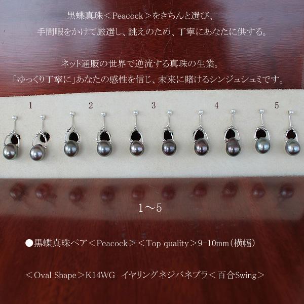 ●黒蝶真珠ペア<Peacock><Top quality>9.5-10mm<Oval Shape>K14WG イヤリングネジバネブラ<百合Swing>