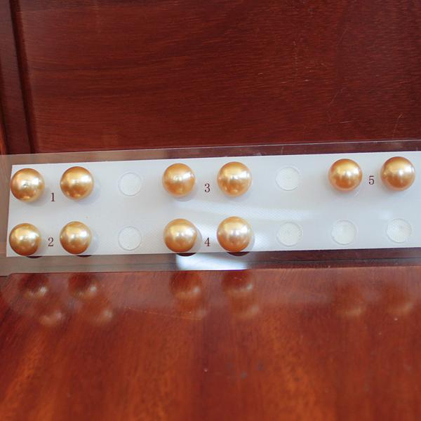 ●白蝶真珠ペア<ルース無穴><Natural Gold><Top quality><Semi Round Shape>13-14mm<Titan Piace>直結※K18 or K14WG オプションです。選択くださいませ