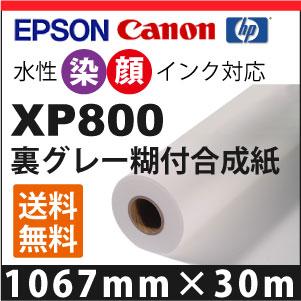 XP800 裏グレー糊付合成紙 (1067mm×30m)