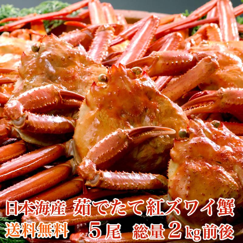 小針水産 【送料無料】日本海産 茹でたて紅ズワイ蟹 5尾(総量2kg前後)【かに カニ 蟹】