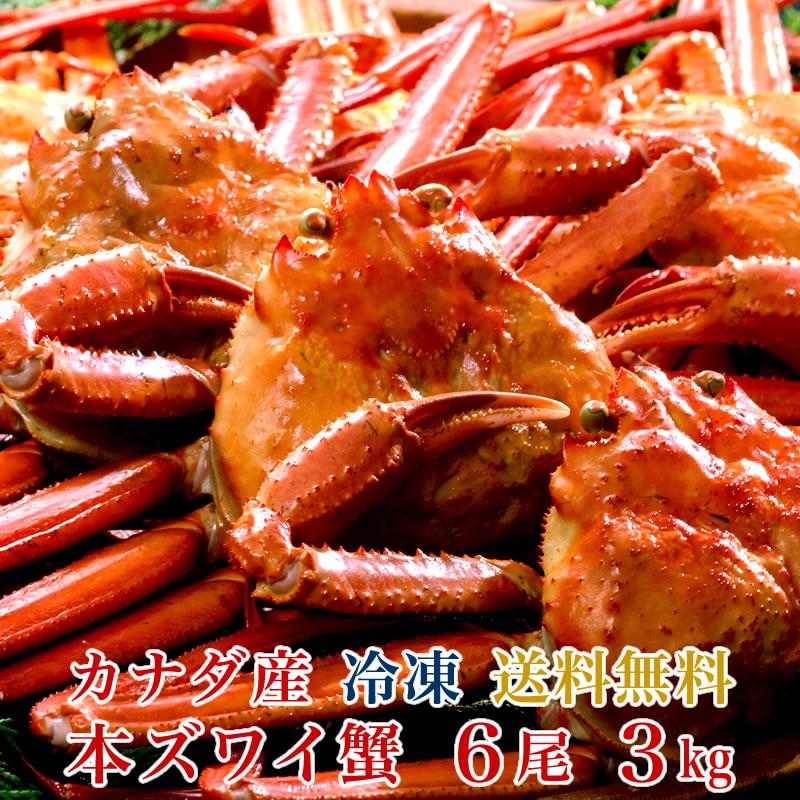 【送料無料】カナダ産 本ズワイ蟹 6尾(総量3kg)【濃厚な蟹みそ】【ギフト 贈答】【かに 蟹 カニ】
