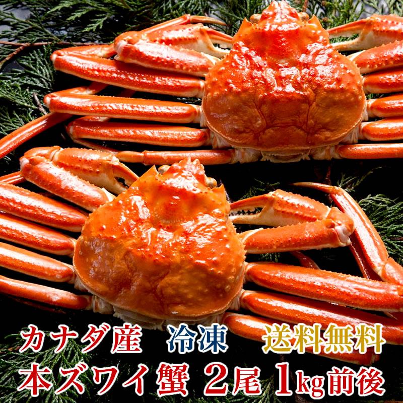 【送料無料】カナダ産 本ズワイ蟹 2尾(総量1kg前後)【濃厚な蟹みそ】【ギフト 贈答】【かに 蟹 カニ】