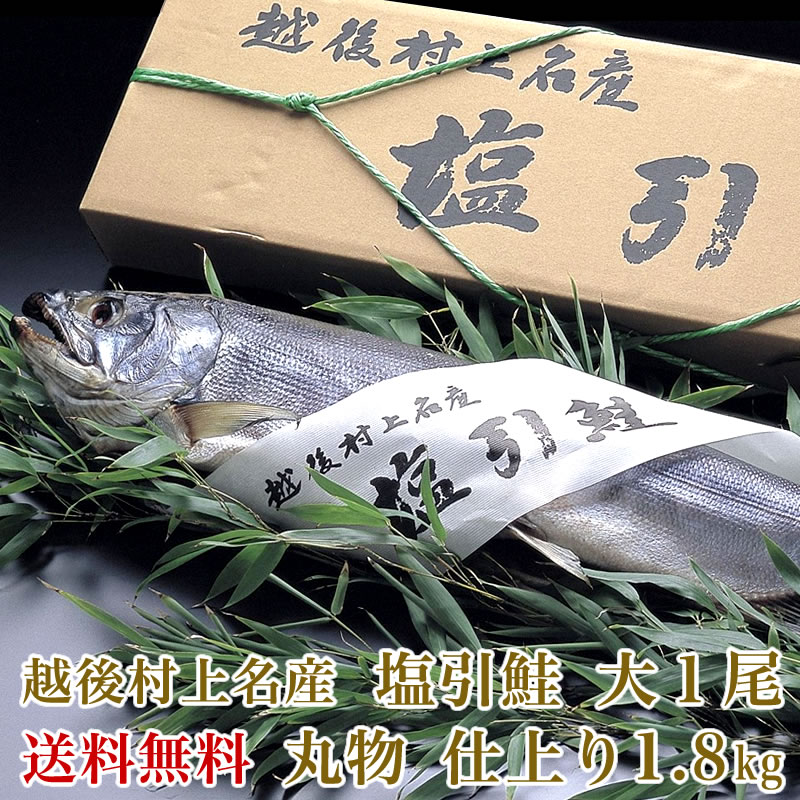 【送料無料】越後村上名産 塩引鮭 中 1 尾(仕上り 1.8kg前後)【さけ サケ 鮭】