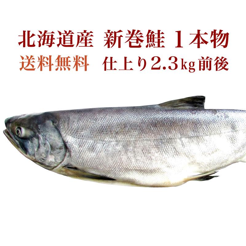 【送料無料】北海道産 新巻鮭(仕上り 2.3kg 前後) 1 本物 【鮭 さけ サケ】