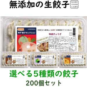 美味しい無添加餃子5種類から選べる冷凍生餃子10パック200個一番お得な餃子のみのセットです8,800円 送料込み(一部地域除外)お好きな餃子を10パックお選び下さい