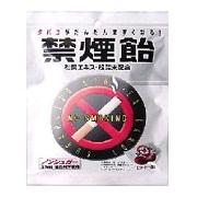 【ポイント13倍相当】株式会社リペロニコレット・ニコダスのおともに禁煙飴 コーヒー味 70g×30個セット