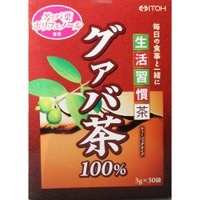 【ポイント13倍相当】井藤漢方製薬グァバ茶100%3g×30袋×6個セット