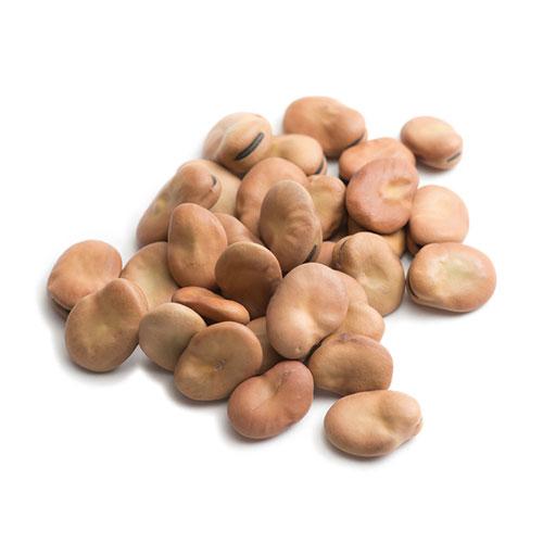 そら豆 乾燥 大粒 20kg(1kg×20袋) 【ソラマメ,ファバビーン,Faba Beans,業務用,神戸スパイス,スープ,卸,材料,ドライ,Soybean】送料無料