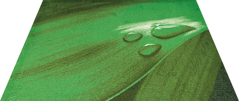 Office & Decor Leaf Drop _リーフト゛ロッフ゜ 145 x 200 cm玄関マット Office&Decor オフィスマット 屋内 室内 自然 ナチュラル エレガント 70種類 日本製 洗える 花 緑 グリーン オーカ゛ニックリーフ