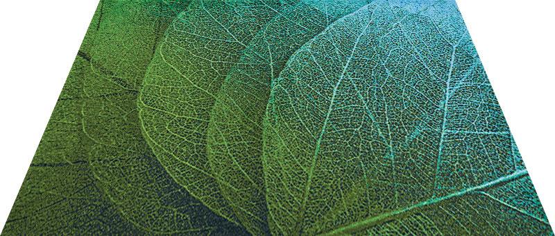 Office & Decor Green Veins _ク゛リーンヘ゛インス゛ 90 x 120 cm玄関マット Office&Decor オフィスマット 屋内 室内 自然 ナチュラル エレガント 70種類 日本製 洗える 花 緑 グリーンヘ゛インス゛