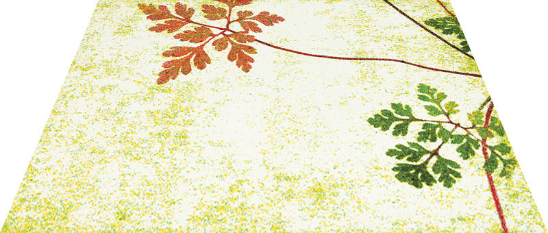 Office & Decor Wild Flower_ワイルト゛フラワー 145 x 200 cm玄関マット 屋内 室内 自然 Office&Decor オフィスマット ナチュラル エレガント 70種類 日本製 洗える 質感 花 桜 フラワー