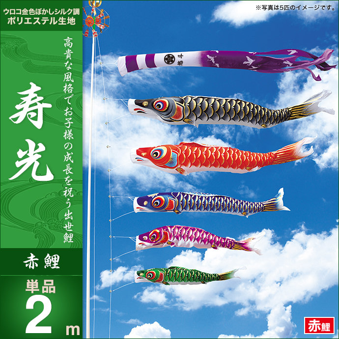 【2020年 新作】 【鯉のぼり 単品】【こいのぼり 単品】 キング印 寿光撥水 赤鯉2m こいのぼり 単品 人形広場