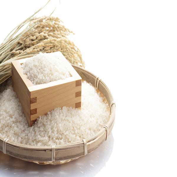 【送料無料!!一部の地域を除く】玄米 白米 晴れの国岡山 特別栽培朝日米 あさひ 岡山を代表する米 玄米【約30kg】白米【約27kg】 販売中 農家直送