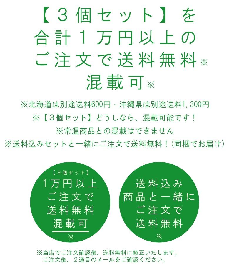 【3個セット】ぽんかんシャーベット3個/高知アイス【RCP】
