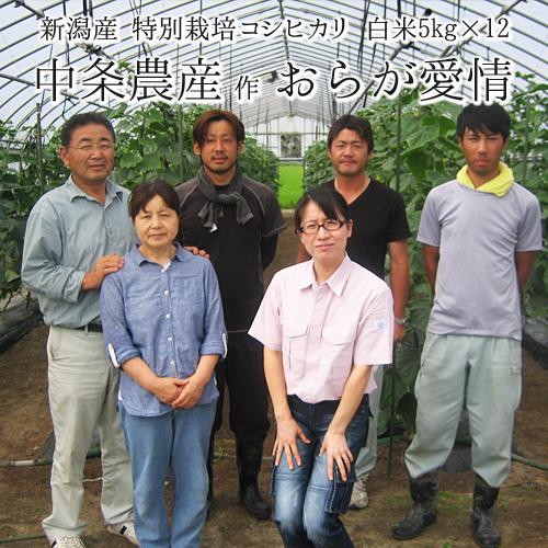 【定期便 1年分】【特別栽培米】 新潟県産 コシヒカリ「おらが愛情」 白米 (5kg袋×12回)