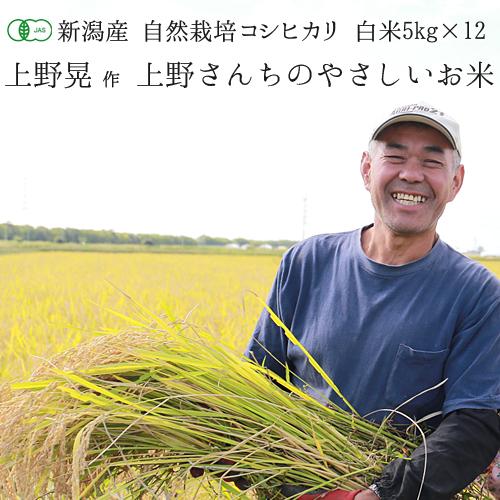 【令和1年度産米】【定期便 1年分】有機JAS認証 新潟県産 コシヒカリ「上野さんちのやさしいお米」 白米 (5kg袋×12回)