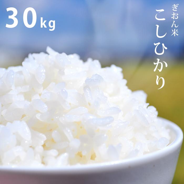 【平成30年産】滋賀県産ぎおん米コシヒカリ(こしひかり)30kg 送料無料まとめ買い、仕送りにも お米 ご飯 白米
