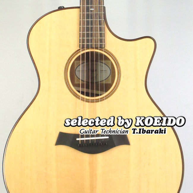 【New】Taylor USA Custom GA-Mahogany V-Class(selected by KOEIDO)店長厳選、群を抜く希少なカスタム!テイラー