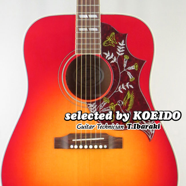 【New】Gibson Humming Bird 2018 VCS(selected by KOEIDO)店長厳選、実にパワフルな生きた最新ハミングバード!