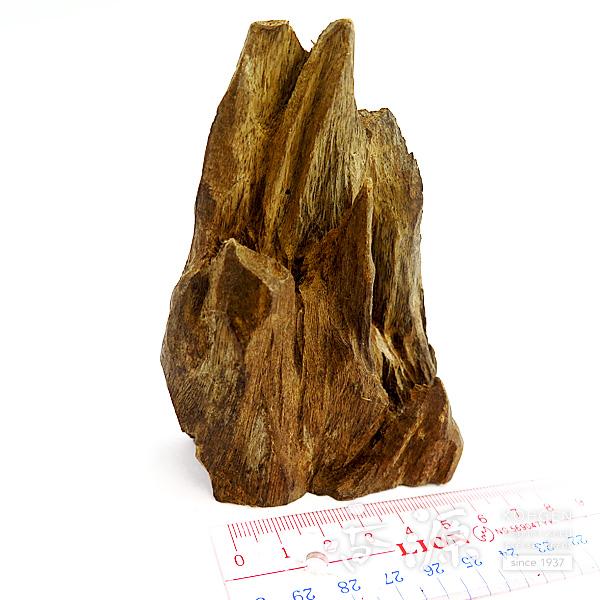 インドネシア産沈香 並タニ沈香 姿物 No.67 30g 弁香