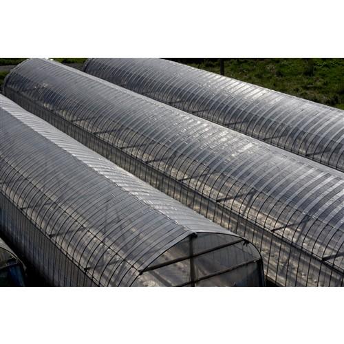 タフニック 農業用ビニール 透明 0.1mm×1.5m×100m