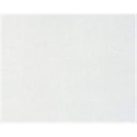 (株)クトクマーケティング カラー合板 G-5 ホワイト 10枚セットホワイト